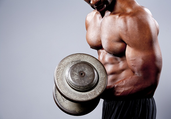 gains on anadrol