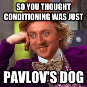 Pavlov Conditioning