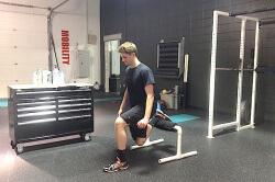 rear foot elevated split-squat