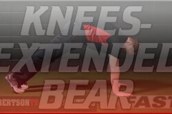 rts-yt-knees-extended-bear