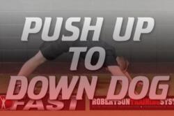 pushup-to-downdog