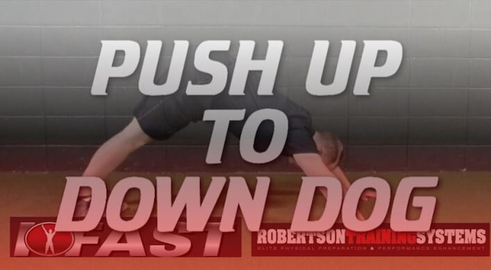 pushup-to-downdog