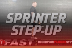 sprinter-stepup